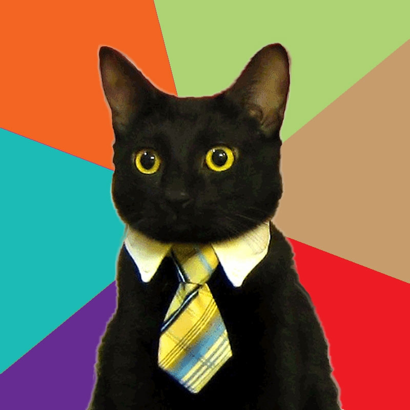 Business Cat Doin His Thang